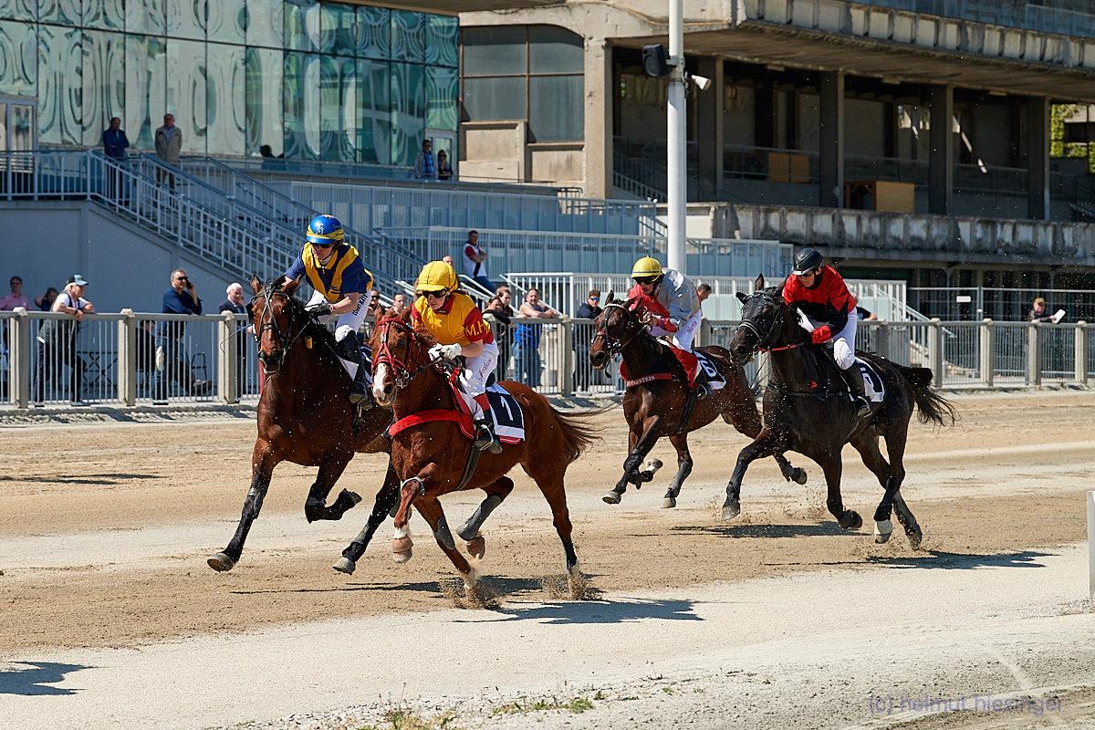 Rennen III - Trabreiten